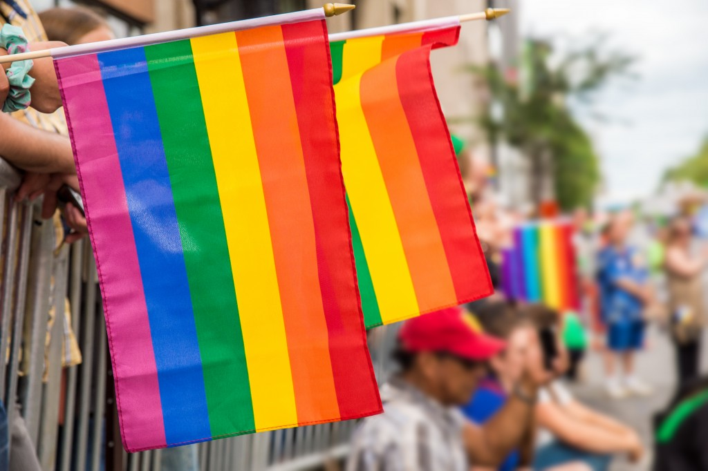 Pride flag during pride march